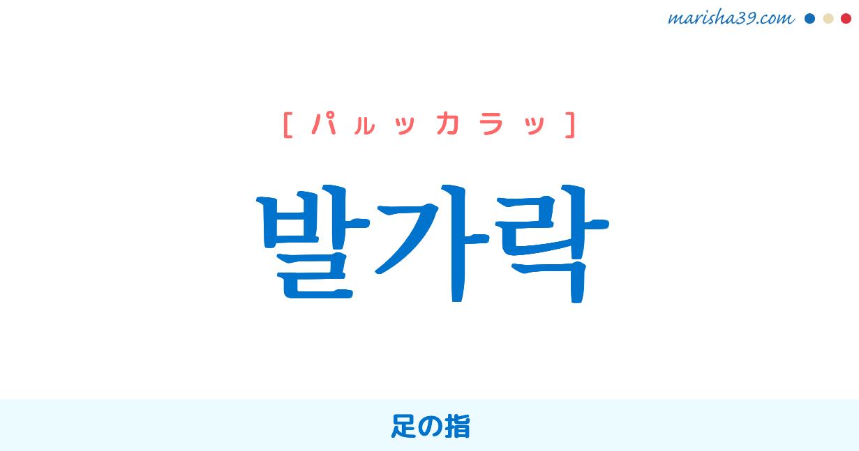 韓国語単語勉強 발가락 [パルッカラッ] 足の指 意味・活用・読み方と音声発音