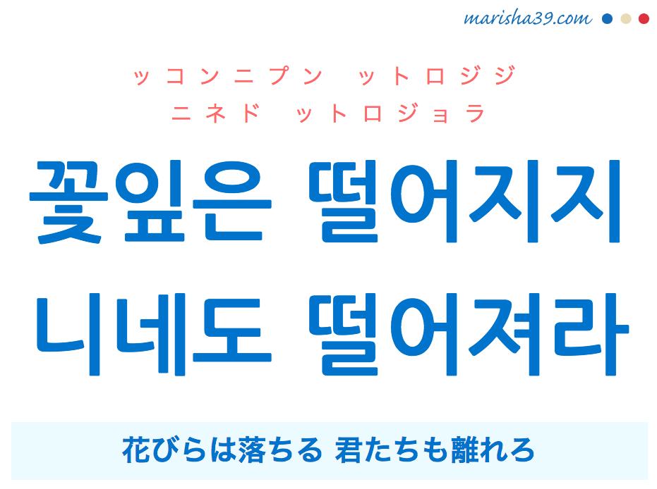 韓国語で表現 꽃잎은 떨어지지 니네도 떨어져라 花びらは落ちる 君たちも離れろ [ッコンニプン ットロジジ ニネド ットロジョラ] 歌詞から学ぶ