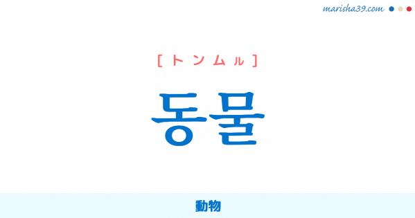 韓国語単語勉強 동물 [トンムル] 動物 意味・活用・読み方と音声発音