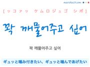 韓国語で表現 꽉 깨물어주고 싶어 [ッコァッ ケムロジュゴ シポ] ギュッと噛み付きたい、ギュッと噛んであげたい 歌詞から学ぶ