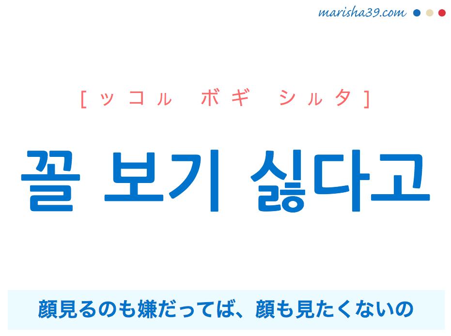 韓国語で表現 꼴 보기 싫다고 [ッコル ボギ シルタ] 顔見るのも嫌だってば、顔も見たくないの 歌詞で勉強