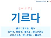 韓国語単語・ハングル 기르다 [キルダ] 養う、育てる、飼う、生やす、伸ばす、蓄える、身につける、こじらせる、放っておく、募らす 意味・活用・読み方と音声発音 MARISHA Twitter