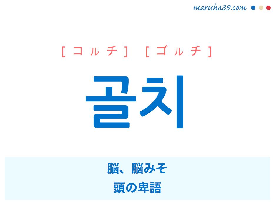 韓国語単語・ハングル 골치 [コルチ] [ゴルチ] 脳、脳みそ、頭 の卑語 意味・活用・読み方と音声発音