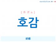 韓国語単語 호감 [ホガム] 好感 意味・活用・読み方と音声発音
