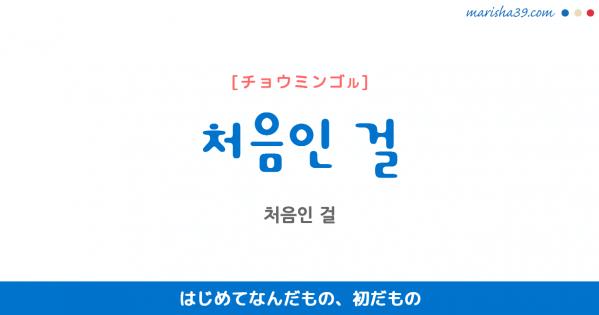 韓国語表現を歌詞で勉強 처음인 걸 はじめてなんだもの、初だもの [チョウミンゴル]