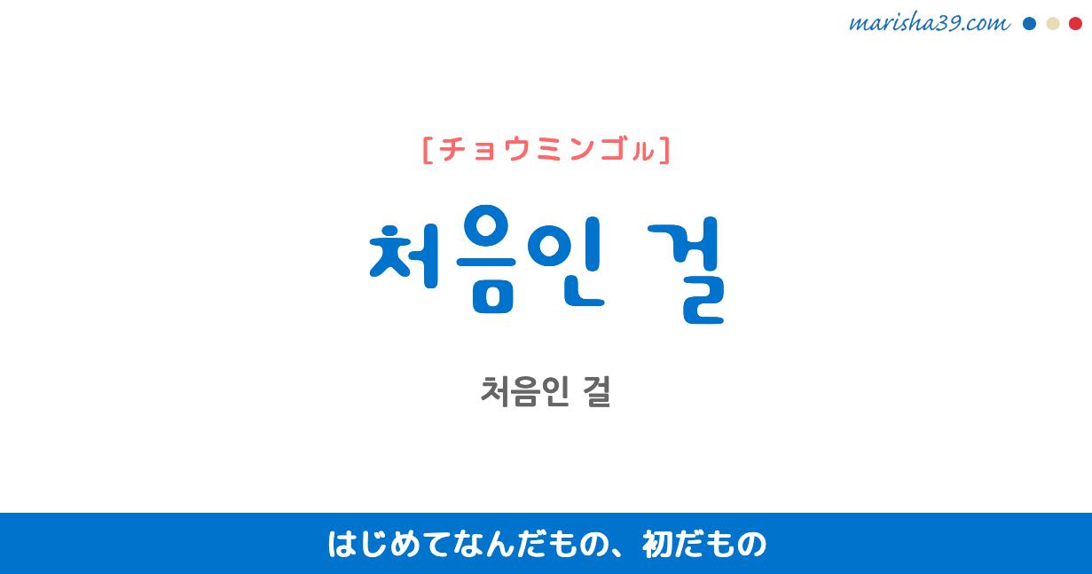 韓国語で表現 ~인 걸 [~イン ゴ...