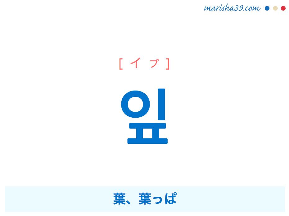 韓国語単語・ハングル 잎 [イプ] 葉、葉っぱ 意味・活用・読み方と音声発音