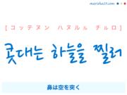 韓国語で表現 콧대는 하늘을 찔러 [コッテヌン ハヌルル チルロ] 鼻は空を突く 歌詞から学ぶ