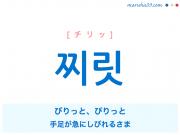 韓国語単語・ハングル 찌릿 [チリッ] びりっと、ぴりっと(手足が急にしびれるさま) 意味・活用・読み方と音声発音