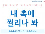 韓国語で表現 내 촉에 찔리나 봐 [ネ チョゲ ッチルリナボァ] 私の勘でビクッとしてるみたい 歌詞で勉強