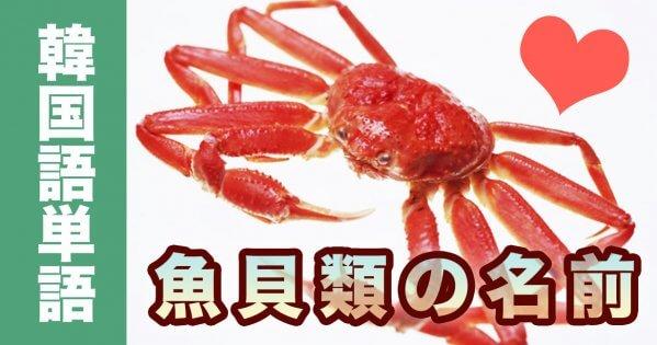 韓国語ハングル一覧 動物の名前単語集【魚貝類】