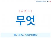 韓国語単語 무엇 [ムオッ] 何、どれ、'무어'と同じ 意味・活用・読み方と音声発音