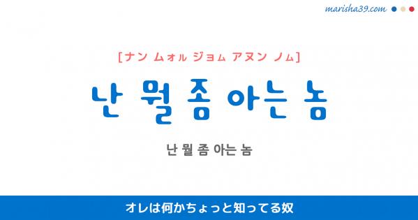 韓国語表現を歌詞で勉強【난 뭘 좀 아는 놈】とは?オレは何かちょっと知ってる奴 [ナン ムォル ジョム アヌン ノム]