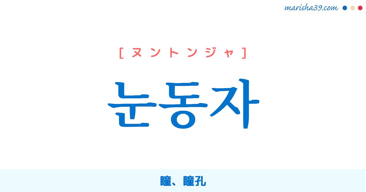 韓国語単語・ハングル 눈동자 [ヌントンジャ] 瞳、瞳孔 意味・活用・読み方と音声発音