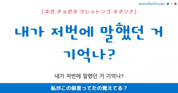韓国語勉強☆フレーズ音声 내가 저번에 말했던 거 기억나? 私がこの前言ってたの覚えてる?