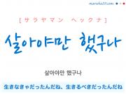 韓国語・ハングルで表現 살아야만 했구나 生きなきゃだったんだね、生きるべきだったんだね [サラヤマン ヘックナ] 歌詞を例にプチ解説