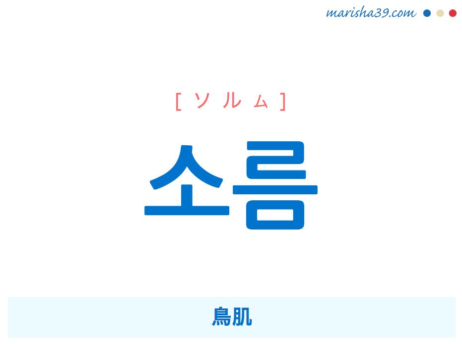 韓国語単語・ハングル 소름 [ソルム] 鳥肌 意味・活用・読み方と音声発音