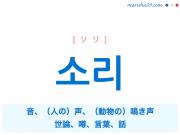 韓国語・ハングル 소리 [ソリ] 音、(人の)声、(動物の)鳴き声、世論、噂、言葉、話 意味・活用・読み方と音声発音