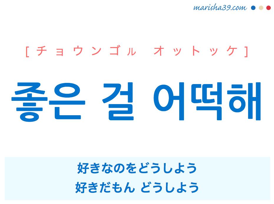 韓国語で表現 좋은 걸 어떡해 [チョウンゴル オットッケ] 好きなのをどうしよう、好きだもん どうしよう 歌詞で勉強