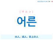 韓国語単語・ハングル 어른 [オルン] 大人、成人、目上の人 意味・活用・読み方と音声発音