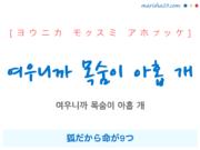 韓国語で表現 여우니까 목숨이 아홉 개 [ヨウニカ モクスミ アホプッケ] 狐だから命が9つ 歌詞で勉強